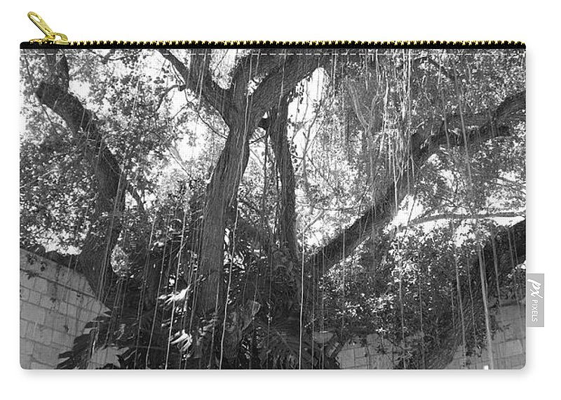 Black And White Carry-all Pouch featuring the photograph The Tree Vines by Rob Hans