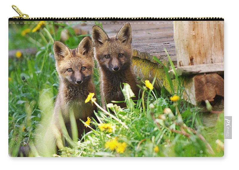 Animal#1 Carry-all Pouch featuring the photograph The Twins by Randy Giesbrecht
