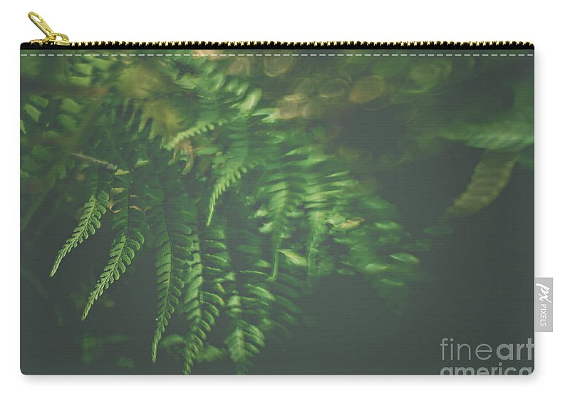 Fern Carry-all Pouch featuring the photograph The Understory by Bethany Helzer