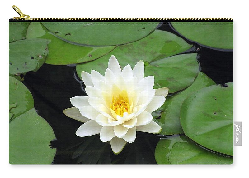 Water Lilies Carry-all Pouch featuring the photograph The Water Lilies Collection - 01 by Pamela Critchlow