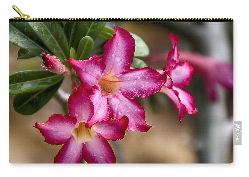 Pink Carry-all Pouch featuring the photograph The Wet Of The Rain V3 by Douglas Barnard