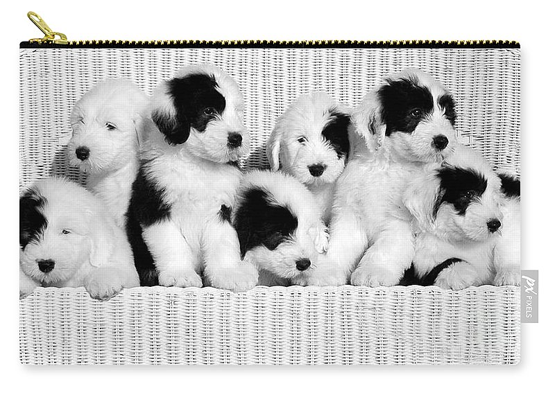 Old #english Carry-all Pouch featuring the photograph The Whole Gang by Kathleen Struckle