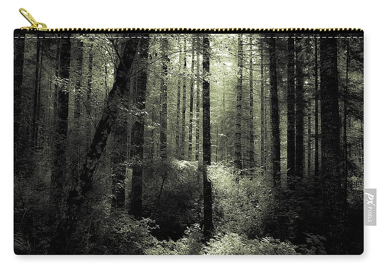 Forest Carry-all Pouch featuring the photograph The Woods by Katie Wing Vigil