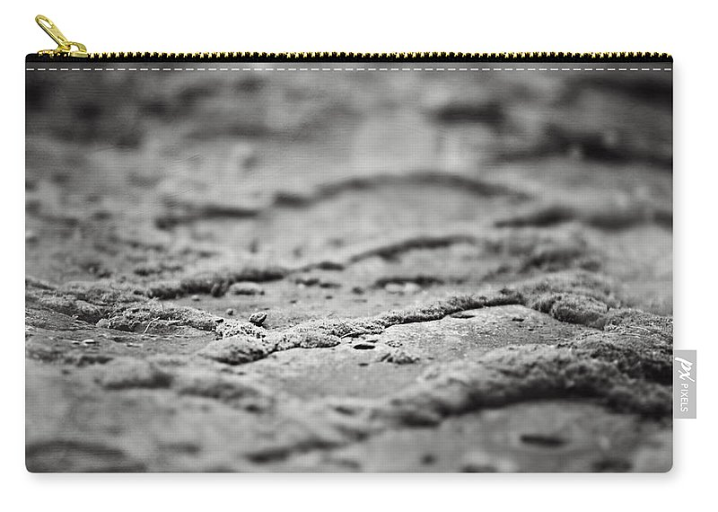 Black And White Carry-all Pouch featuring the photograph The Zen Path Bw by Lisa Russo