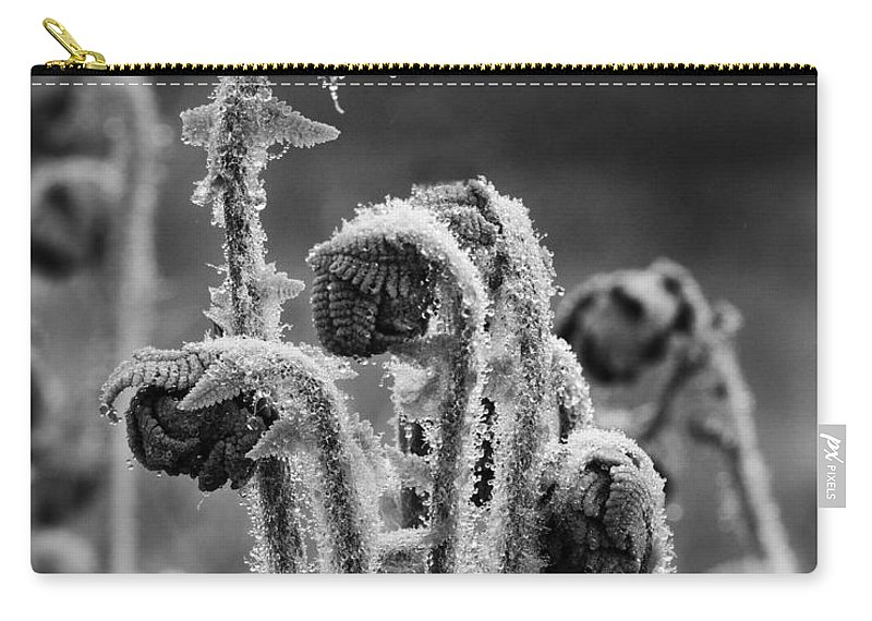 Fern Carry-all Pouch featuring the photograph There Is One In Every Crowd by Susan Capuano
