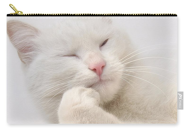 Adorable Carry-all Pouch featuring the photograph Think by TouTouke A Y