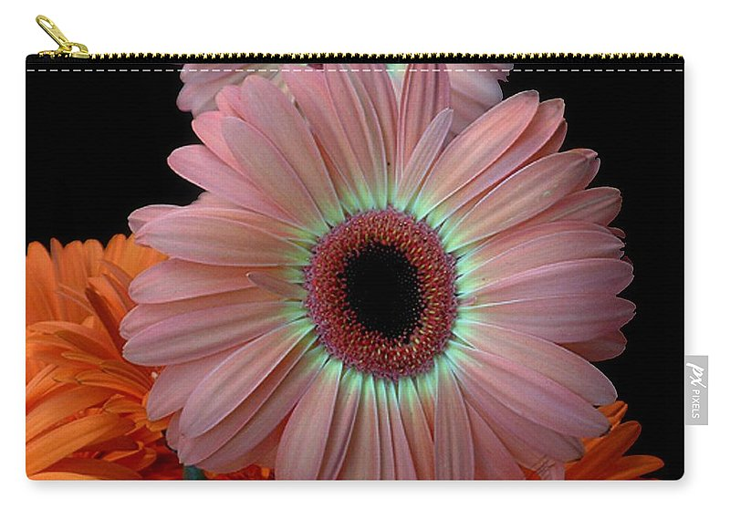 Gerberas Carry-all Pouch featuring the photograph Third Place by RC DeWinter