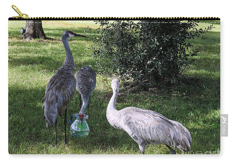 Sandhill Cranes Carry-all Pouch featuring the photograph Thirsty Cranes by Zina Stromberg