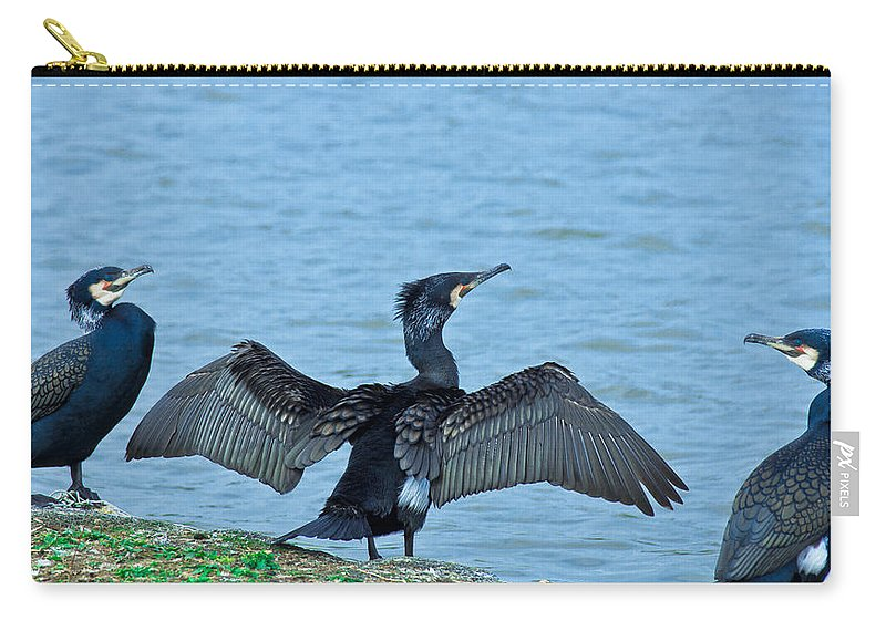 Cormorant Carry-all Pouch featuring the photograph This Is My Part Of The Lake by Scott Carruthers