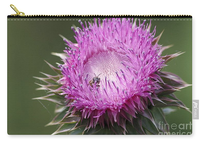 Thistle Carry-all Pouch featuring the photograph Thistle And The Bee by Tannis Baldwin