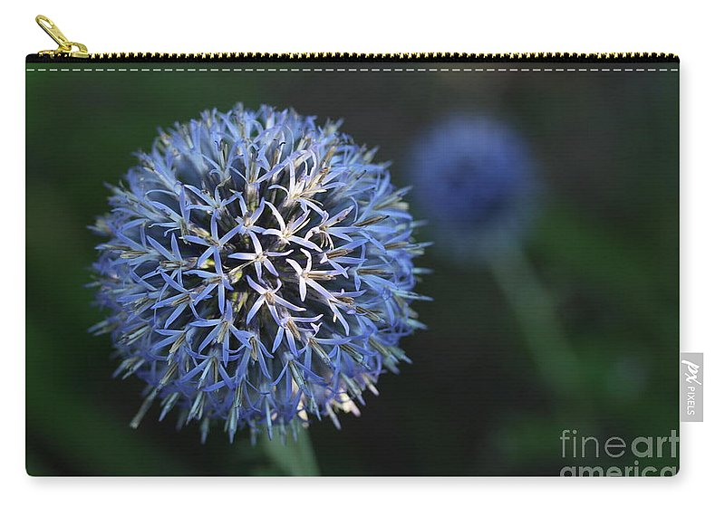 Thistle Carry-all Pouch featuring the photograph Thistle Bloom 2 by Kenny Glotfelty