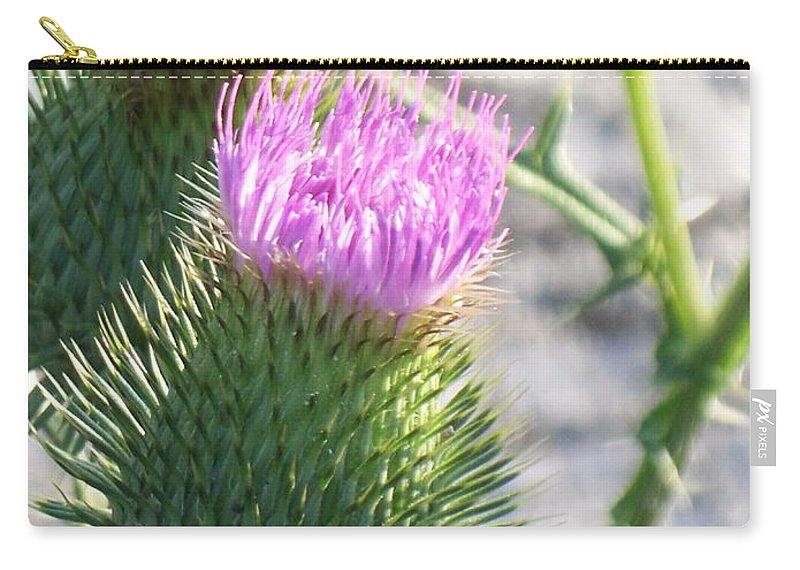Thistle Carry-all Pouch featuring the painting Thistle Flower by Eric Schiabor