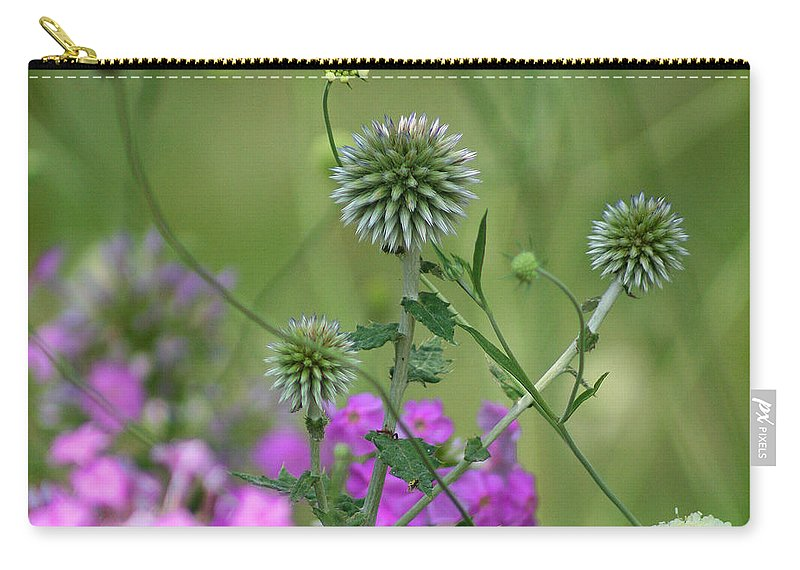 Carry-all Pouch featuring the photograph Thistles by Karen Adams