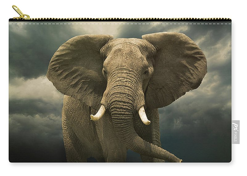 Kenya Carry-all Pouch featuring the photograph Threatening African Elephant Under by Buena Vista Images