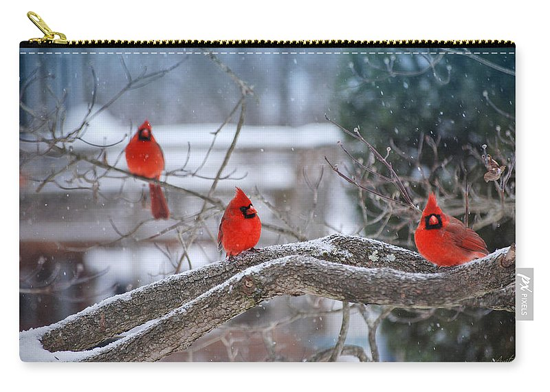 Cardinal Carry-all Pouch featuring the digital art Three Amigos by Anita Hubbard