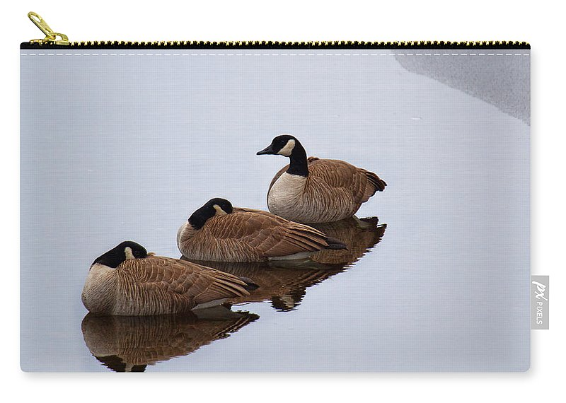 Canadian Goose Canvas Print Carry-all Pouch featuring the photograph Three Canadians by Jim Garrison