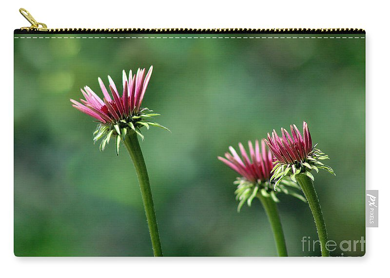 Flowers Carry-all Pouch featuring the photograph Three Coneflowers by Karen Adams