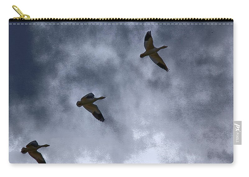 Geese Carry-all Pouch featuring the photograph Three Geese by Lynn Sprowl