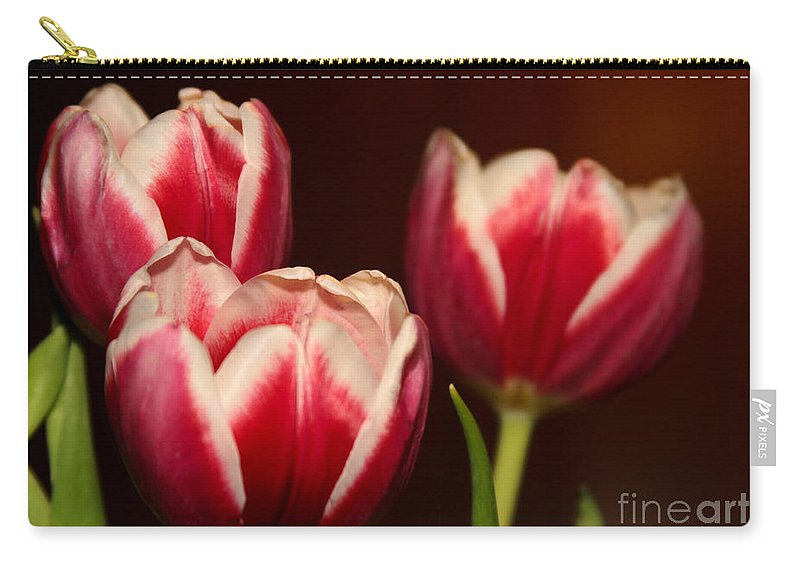 Amazing Carry-all Pouch featuring the photograph Three Red Tulips by Sabrina L Ryan
