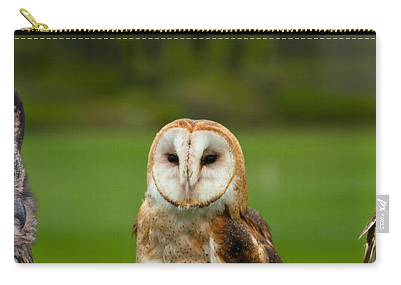 Barn Carry-all Pouch featuring the photograph Three Wise Owls by Les Palenik