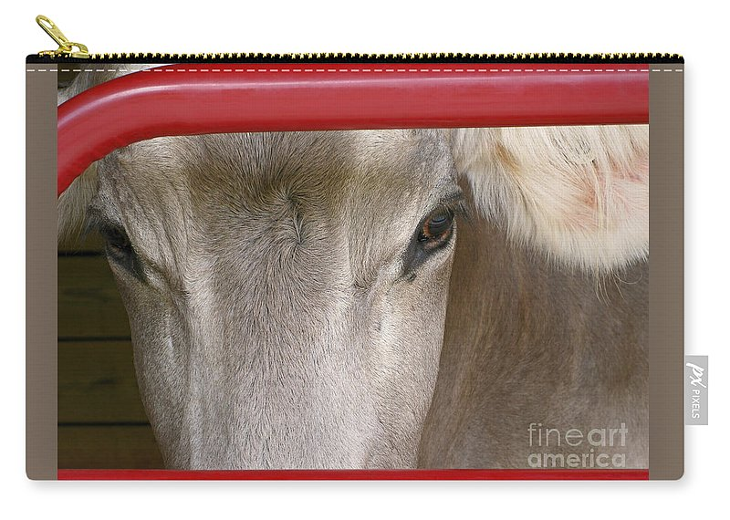 Cow Carry-all Pouch featuring the photograph Through The Gate by Ann Horn