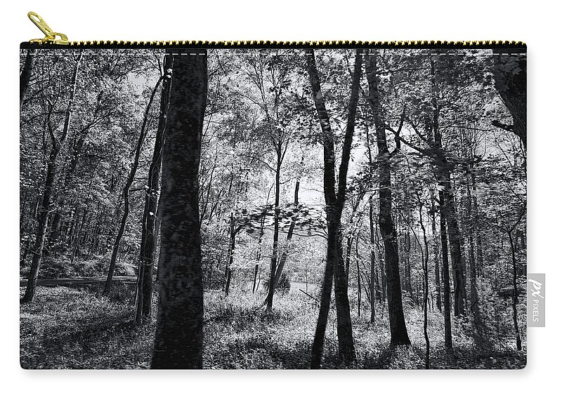 Trees Carry-all Pouch featuring the photograph Through The Trees In Black And White by Kathy Clark