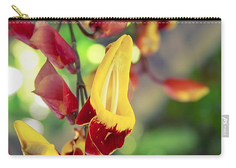 Thunbergia Mysorensis Carry-all Pouch featuring the photograph Thunbergia Mysorensis - Trumpetvine by Sharon Mau