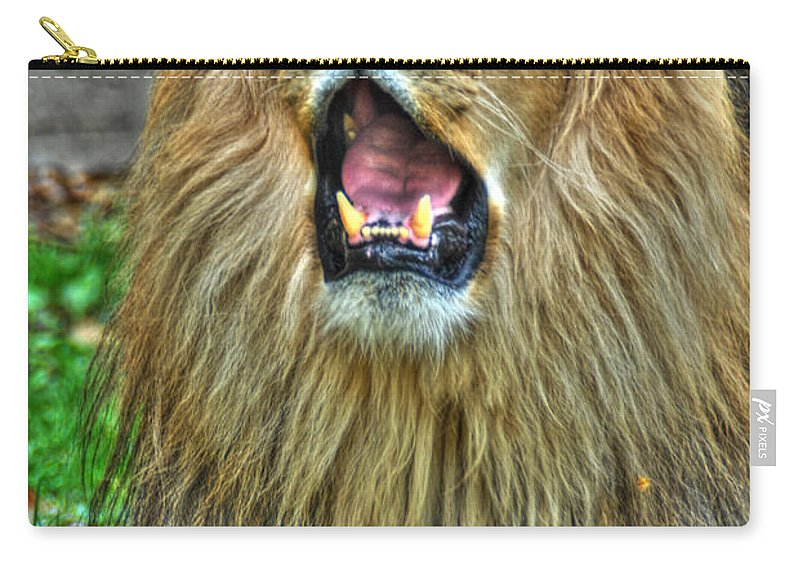 Lion Carry-all Pouch featuring the photograph Thunder Vocals Of Lazy Boy At The Buffalo Zoo by Michael Frank Jr