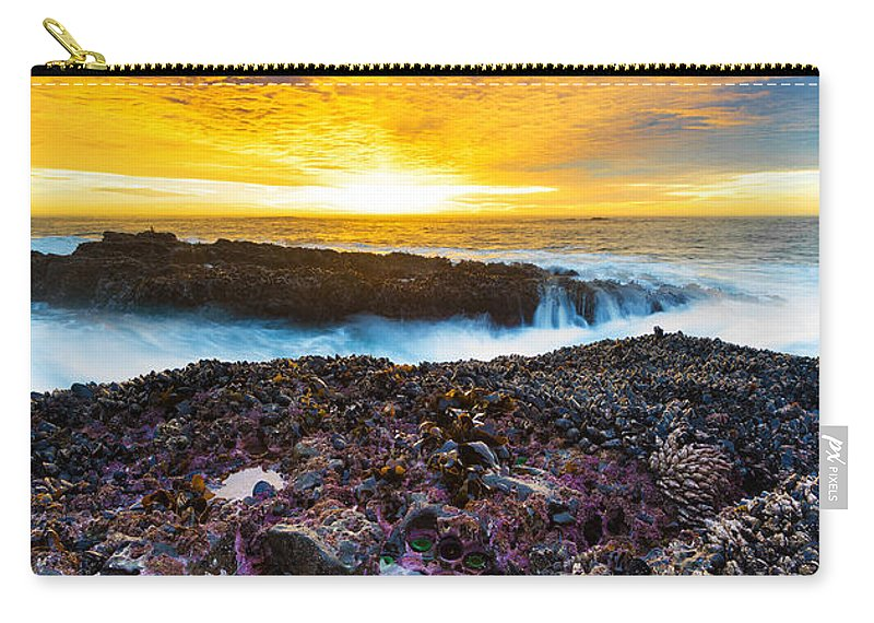 Beach Carry-all Pouch featuring the photograph Tidepool by Robert Bynum