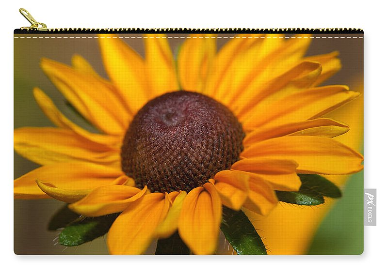 Rudbeckia Carry-all Pouch featuring the photograph Tiger Eye by Karol Livote