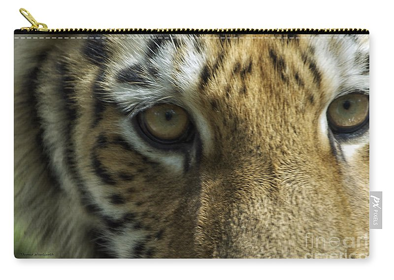 Animals Carry-all Pouch featuring the photograph Tiger Eyes by Thomas Woolworth