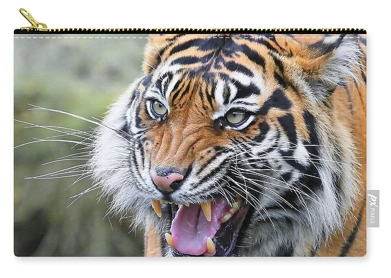 Tiger Carry-all Pouch featuring the photograph Tiger Growl by Athena Mckinzie