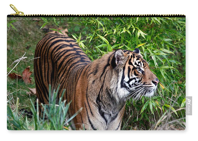 Tiger Carry-all Pouch featuring the photograph Tiger In The Vast Jungles by Athena Mckinzie