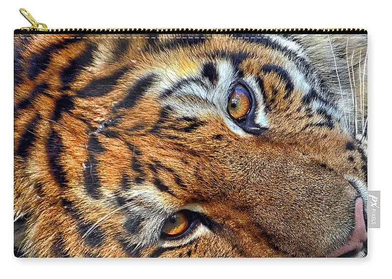 Tiger Eyes Carry-all Pouch featuring the photograph Tiger Peepers by Thomas Woolworth