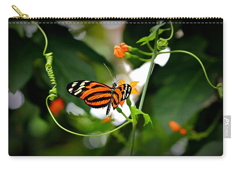 Butterflies Carry-all Pouch featuring the photograph Tiger by Reid Callaway