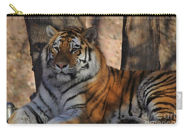 Tiger Carry-all Pouch featuring the photograph Tiger by Tonya Hance