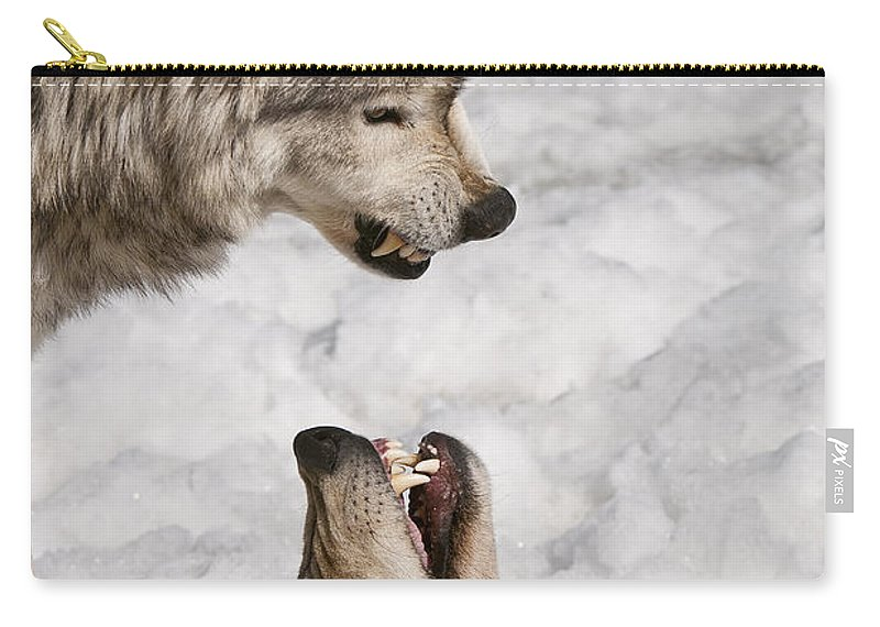 Timber Wolf Carry-all Pouch featuring the photograph Timber Wolf Pictures 775 by World Wildlife Photography