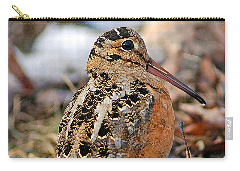 American Woodcock Carry-all Pouch featuring the photograph Timberdoodle The American Woodcock by Timothy Flanigan