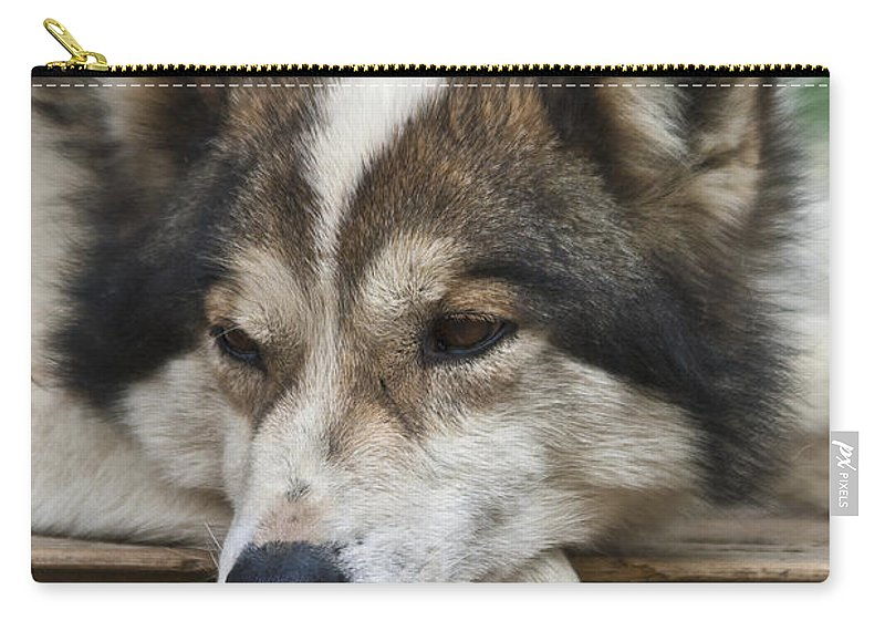 Heiko Carry-all Pouch featuring the photograph Time For A Rest by Heiko Koehrer-Wagner