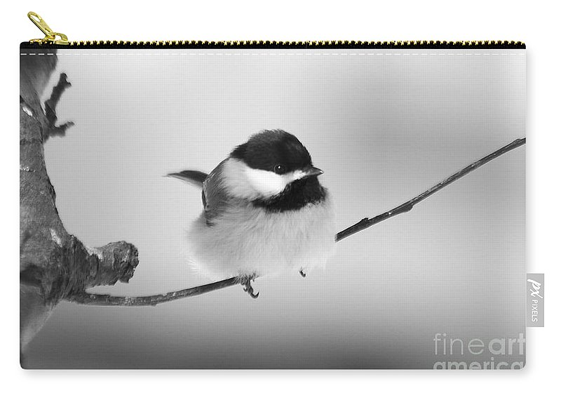 Bird Carry-all Pouch featuring the photograph Tiny Branch With Guest by Deborah Benoit