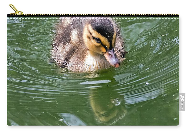 Anas Platyrhynchos Carry-all Pouch featuring the photograph Tiny Duckling by Kate Brown