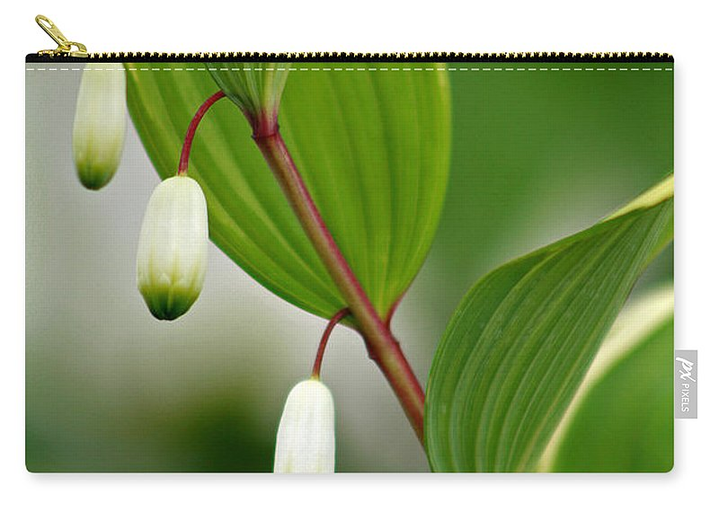Solomon's Seal Carry-all Pouch featuring the photograph Tiny Flowers by Karen Adams