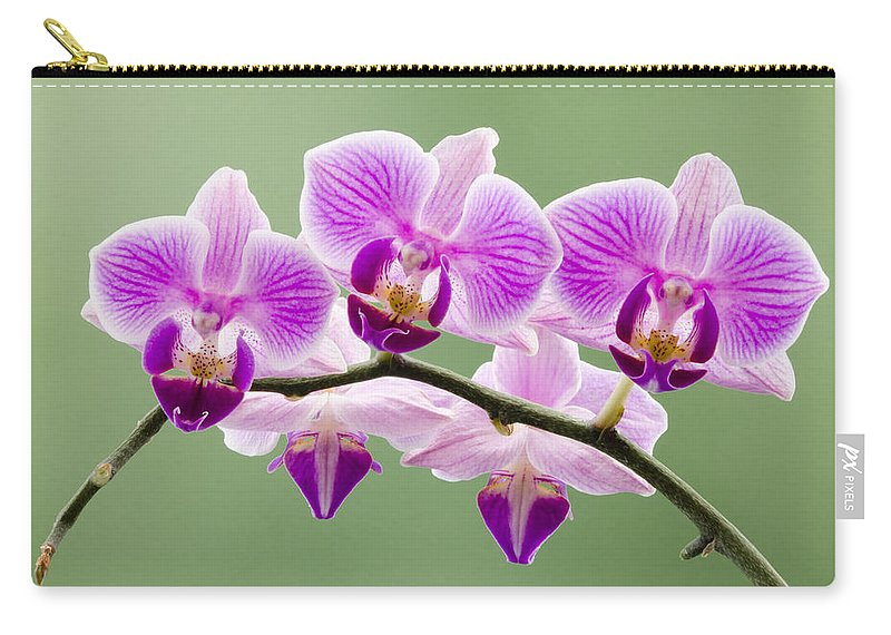 Orchids Carry-all Pouch featuring the photograph Tiny Orchid Faces by Georgette Grossman