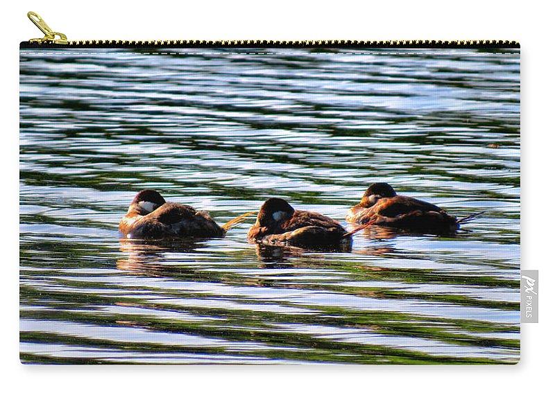 Ducks Carry-all Pouch featuring the photograph Tired Trio by Art Dingo