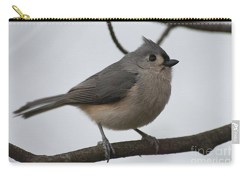 Bird Carry-all Pouch featuring the photograph Tit Mouse 201301 by David Arment