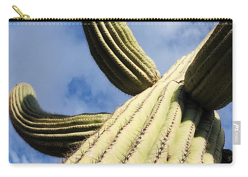 Saguaro Carry-all Pouch featuring the photograph To The Clouds by Vivian Christopher