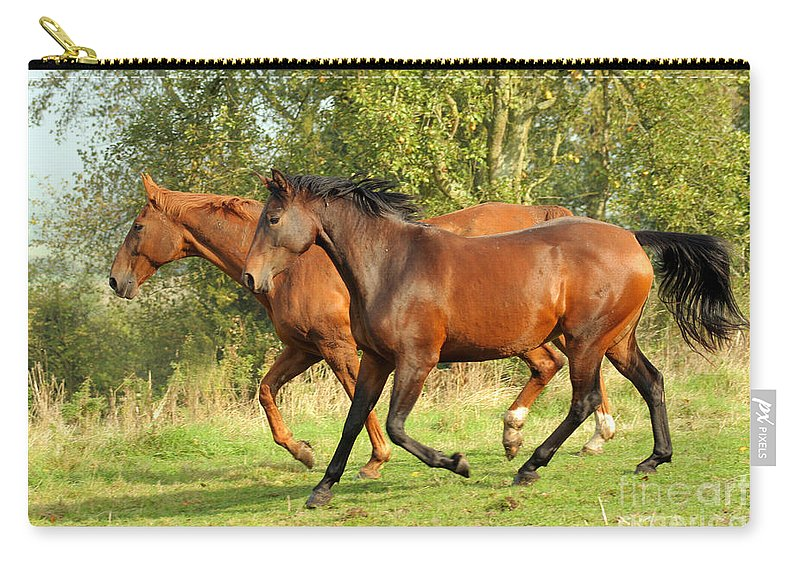Horse Carry-all Pouch featuring the photograph Together Now by Angel Ciesniarska