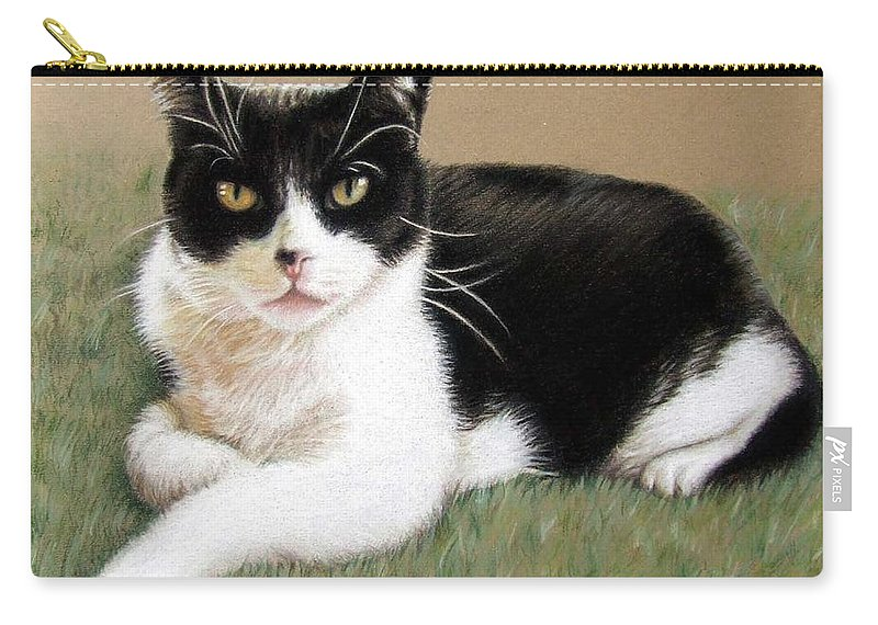 Cat Carry-all Pouch featuring the pastel Tomcat Baloo by Nicole Zeug