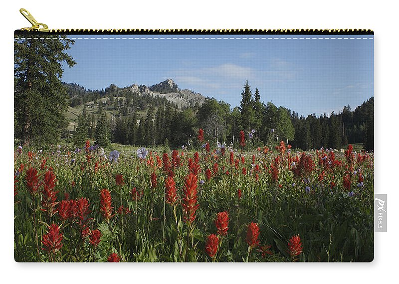 Utah Carry-all Pouch featuring the photograph Tony Grove Lake by Susan Rovira