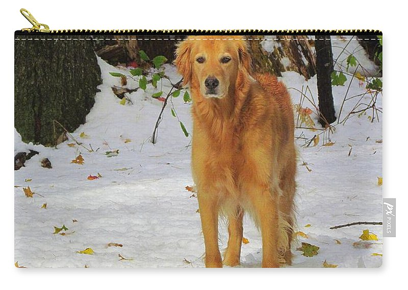 Golden Retriever Carry-all Pouch featuring the photograph Too Early For Snow Mama by Elizabeth Dow
